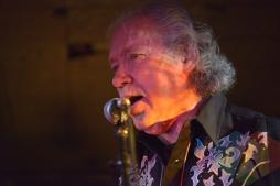 Bruce Good performing with The Sadies. (Photo: Steve Danyleyko/Aesthetic Magazine Toronto)