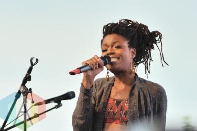 Toronto Reggae Festival 2014. (Photo: Steve Danyleyko/Aesthetic Magazine Toronto)