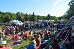 Riverfest Elora 2015. (Photo: Justin Roth/Aesthetic Magazine)