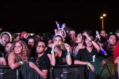 Fun Fun Fun Fest in Austin, Texas. (Photo: Kari Terzino/Aesthetic Magazine)