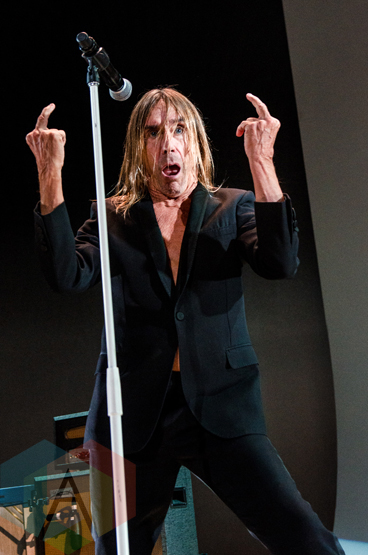 Iggy Pop performing at The Capitol Theatre in Port Chester, New York on April 14, 2016. (Photo: Saidy Lopez/Aesthetic Magazine)