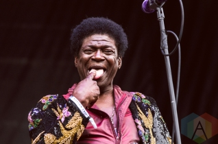 Charles Bradley performing at Boston Calling 2016 at Boston City Hall Plaza in Boston on May 29th. (Photo: Saidy Lopez/Aesthetic Magazine)