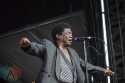 Charles Bradley performing at Field Trip 2016 in Toronto on June 5, 2016. (Photo: Justin Roth/Aesthetic Magazine)