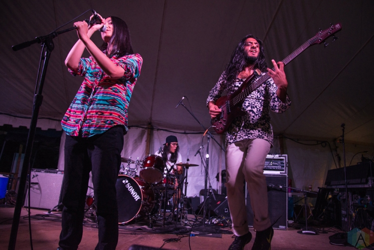 Century Egg performs at Hillside Festival on July 15, 2017. (Photo: Morgan Hotston/Aesthetic Magazine)