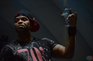 Method Man and Redman perform at Bandshell Park at Exhibition Place in Toronto on July 28, 2017