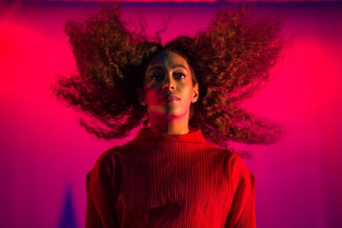Solange performs at the Panorama Music Festival in New York City on July 28, 2017. (Photo: Doug Van Sant)