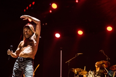 Iggy Pop performs at Project Pabst in Portland, Oregon on August 26, 2017. (Photo: Kevin Tosh/Aesthetic Magazine)