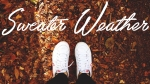Sweater Weather Playlist: 40 Essential Songs ForFall