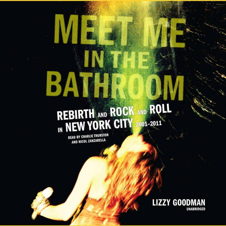 Meet Me in the Bathroomby Lizzy Goodman