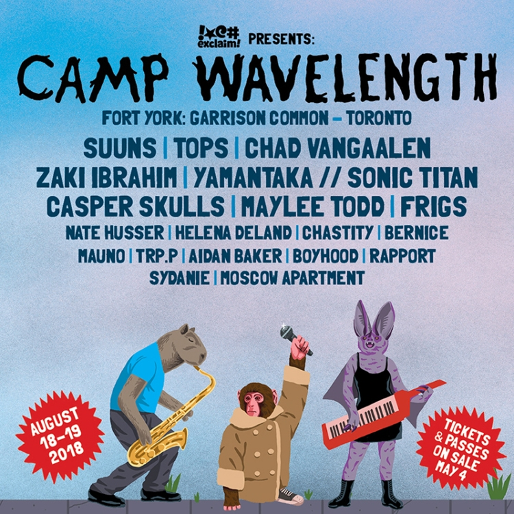 Camp Wavelength Announces 2018 Lineup | Aesthetic Magazine